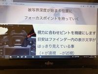 5月14日カメラ練習②.jpg